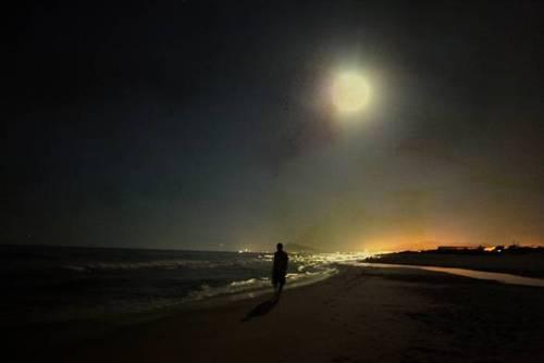 Luna by Adeline Spengler
