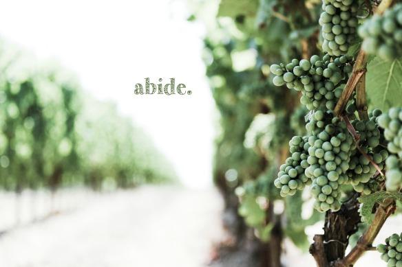 abide2